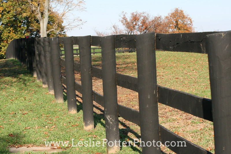 Horse Pasture Post-and-Board Fence