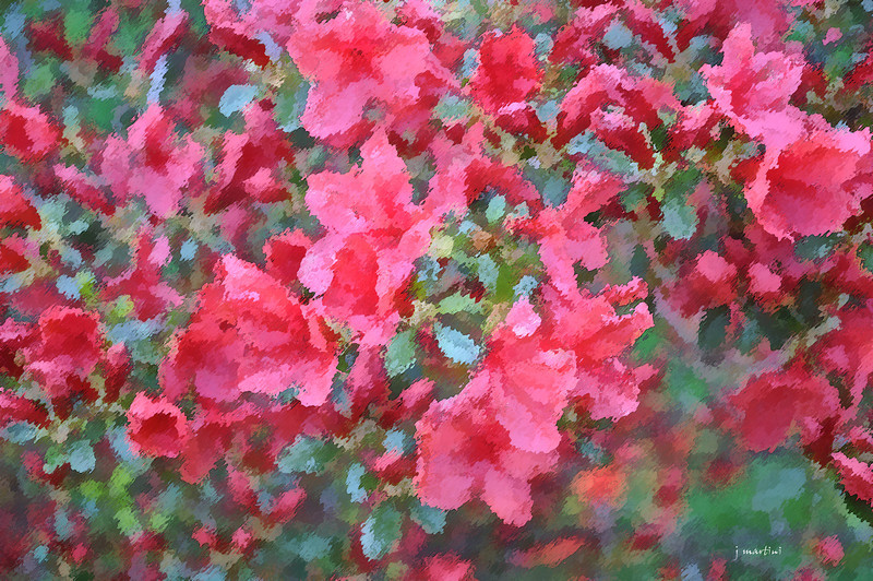 dream gardens 15 2-5-2011.jpg