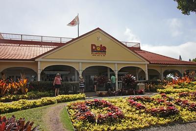 Dole Plantation - June 22