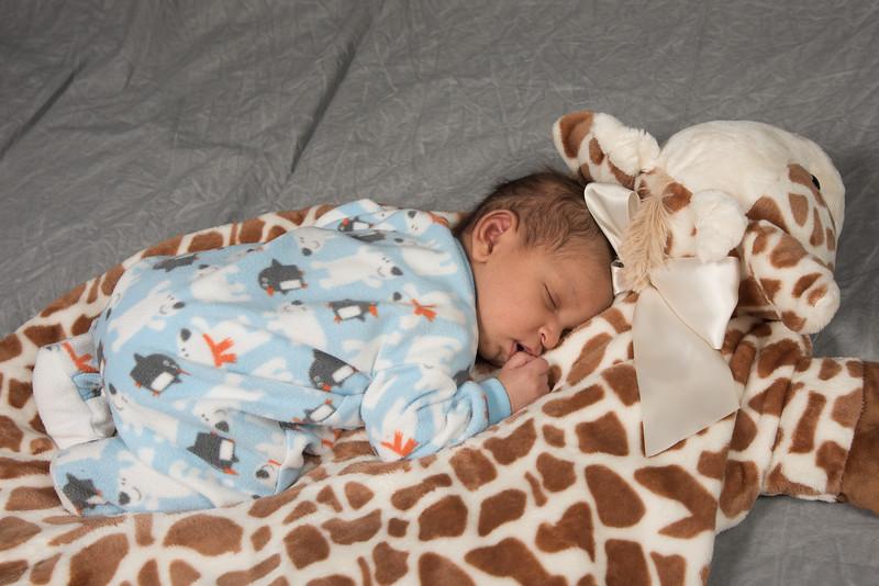 BabyRichard-0357.jpg
