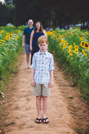 Farley Family Sunflowers 🌻 2021