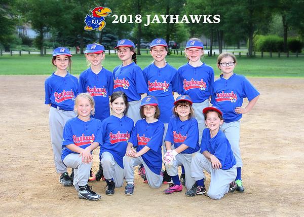 2018 Jayhawks