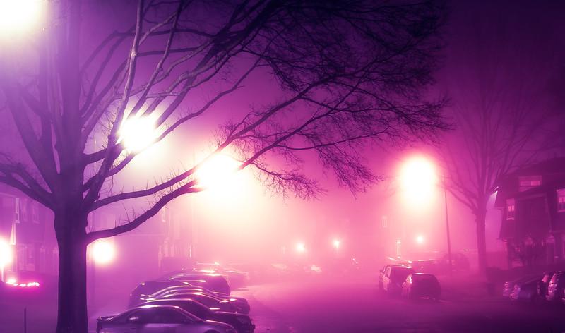 Fog_20151229_8 PSD.jpg
