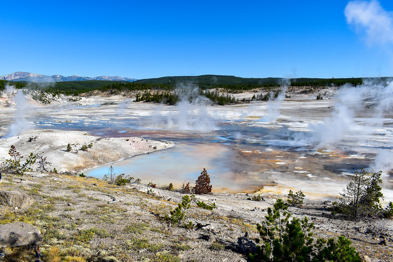 Yellowstone National Park - Norris Geyser Basin (7-21-20)