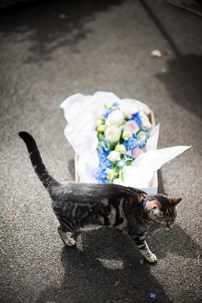 59-beth_ric_portishead_wedding.jpg