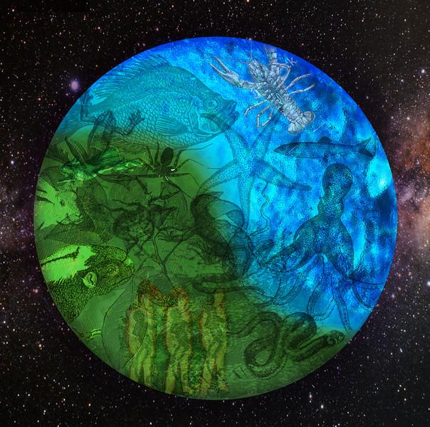 planet life.jpg