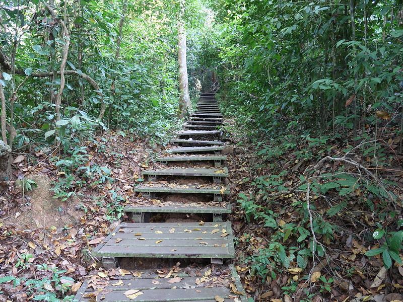 IMG_5268-walk-up-the-hill.JPG