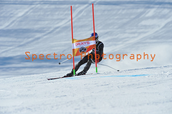 OFSAA Alpine 2014 Level II GS Men