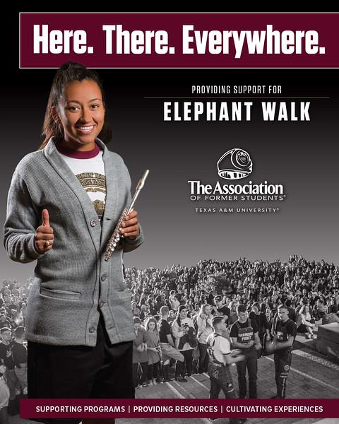 HTE 2017 Campaign - Elephant Walk.jpg