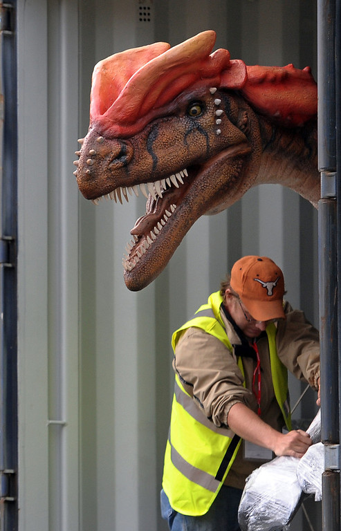 . An animatronic Rugops is removed from a shipping container after being shipped from the US to Chester Zoo in north-west England, on June 15, 2011. The dinosaur is one of 13 that will be on display at the \'Dinosaurs at Large\' exhibition at the zoo from July 1 to October 8, 2011. AFP PHOTO/PAUL ELLIS