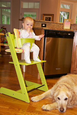 Penelope's New High Chair