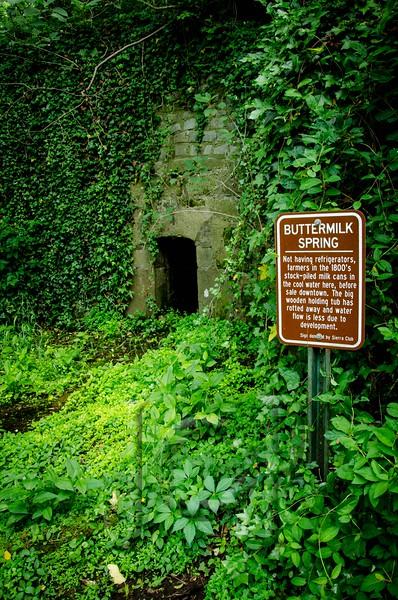 Forest_Hill_WM-1833.jpg