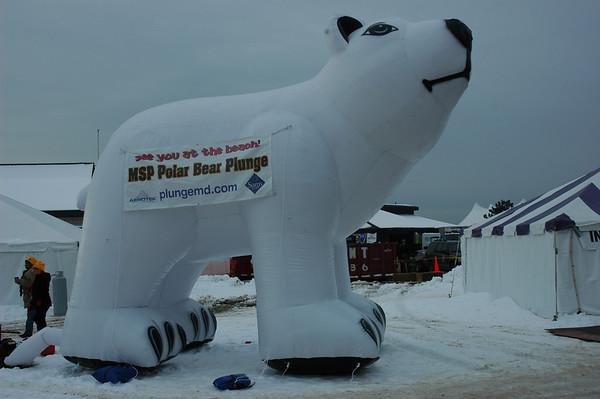 2011 Polar Bear Plunge