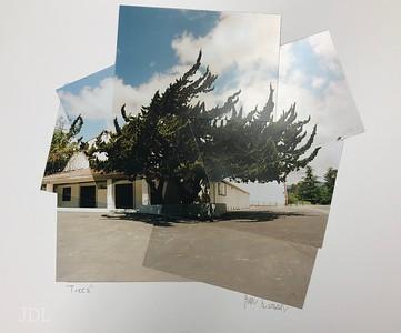 Panography: Full Scene  1 - 24 image