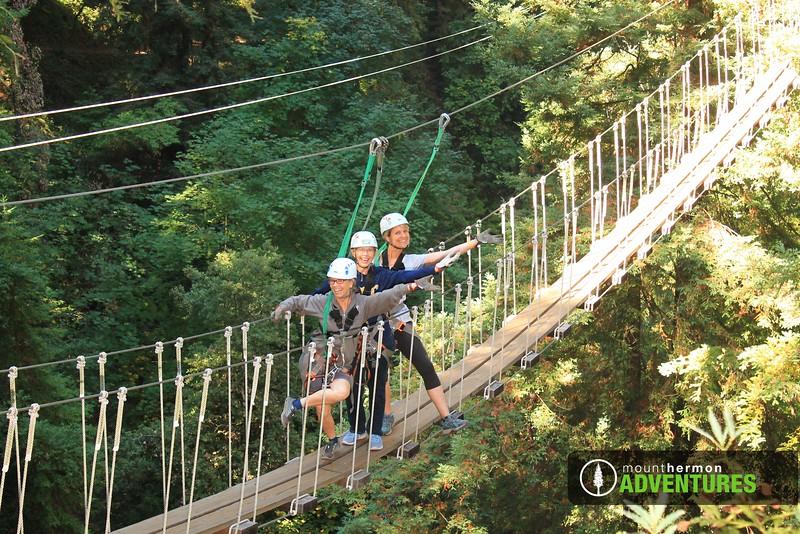 redwood_bridge_1473445928384.jpg
