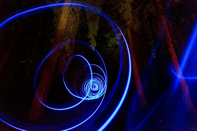 Sequoia_0847.jpg