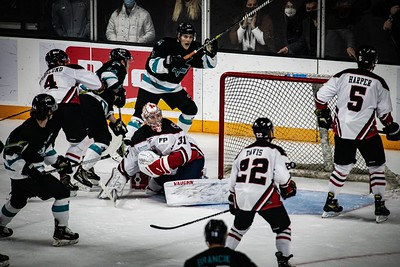 Ice Bears vs  Birmingham 2021-02-04