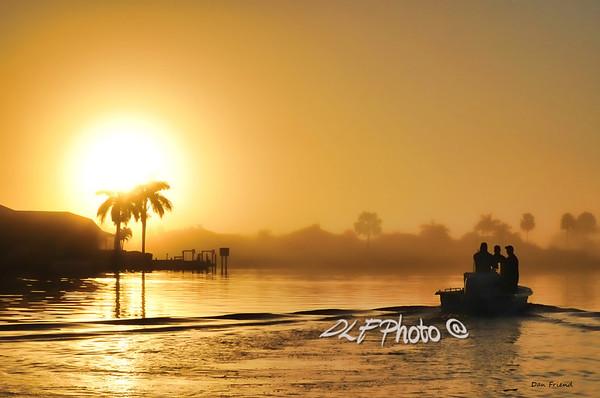 Everglade scenes