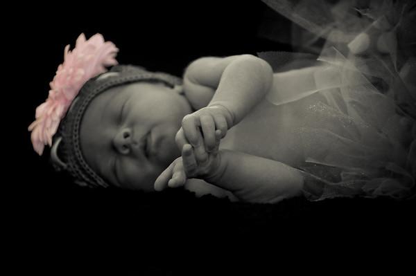 Koepke Newborn