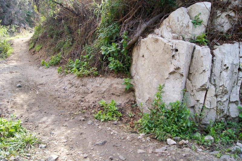 201201291697-El Prieto Trailwork.jpg