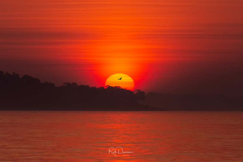 2019_07_Salem Willow Park sunrise_MG_3594-Edit.jpg