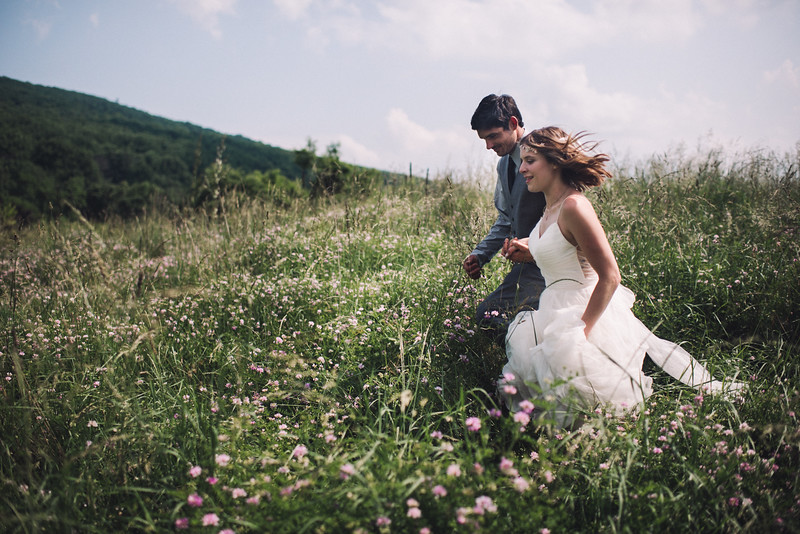 Pittsburgh PA WV Harpers Ferry MD DC Elopement Wedding Photographer - Ford 822.jpg