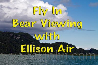 2011 BEAR VIEWING