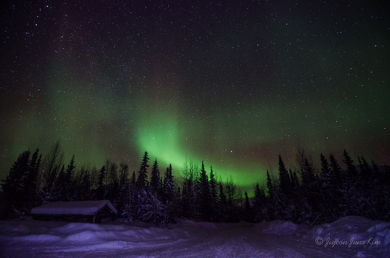 USA-Alaska-Wiseman-Aurora-2919.jpg