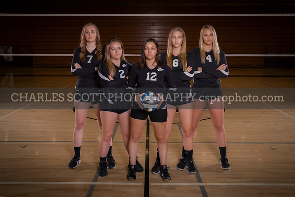WHHS Girls Volleyball