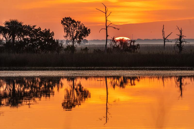 Sunrise Along the Ogeechee