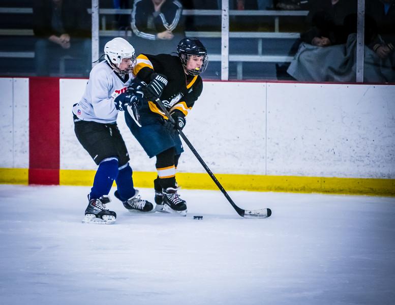 Bruins2-502.jpg