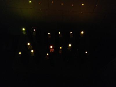 Rikki LED Torches