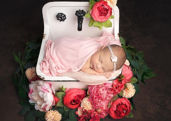 Newborn: Hadley