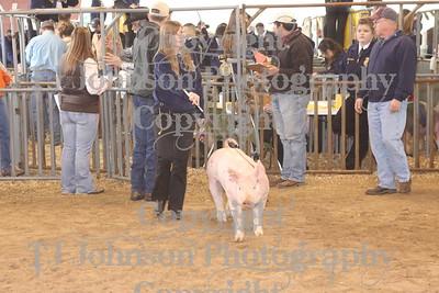 2010 KISD Class 1 Swine
