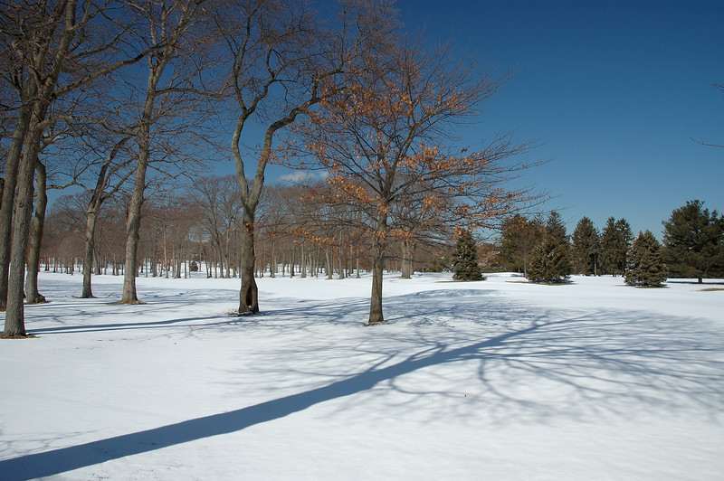 15th Fairway ......as seen from on Park Ave