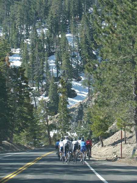 ATOC Stage 6