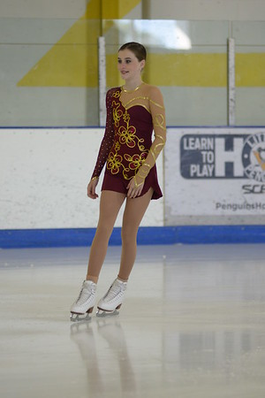 2016 Mt. Lebanon Skating Competition