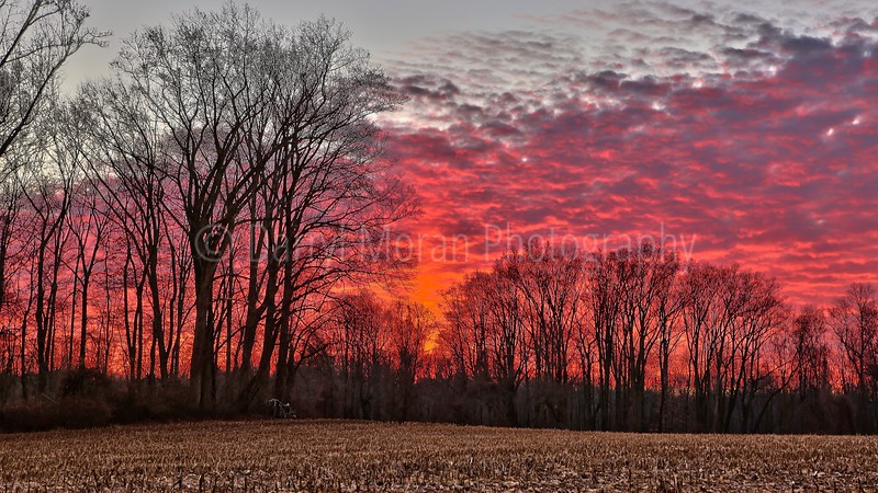 Red Sky Winter Sunset (1)