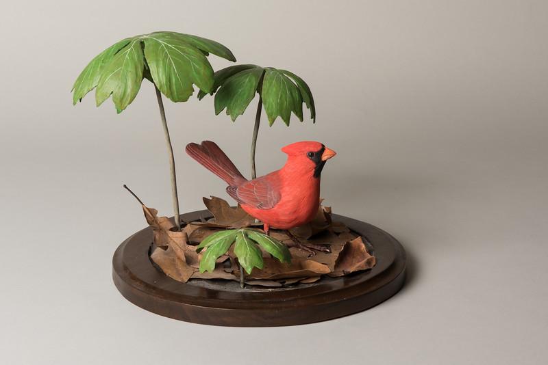 Still Life Dan Holman Birds (8 of 50).jpg