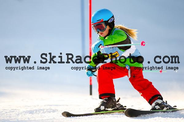 Ski Stars Race