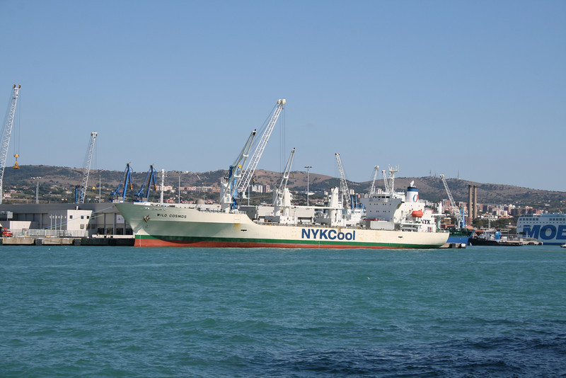 2011 - M/S WILD COSMOS loading in Civitavecchia.