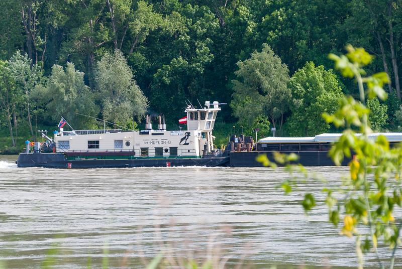 Orth a.d. Donau | Niederösterreich