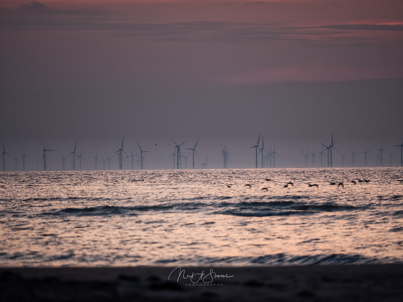 Moody wind farm