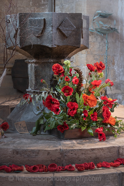 Cathedral & Ripon poppies-11.jpg