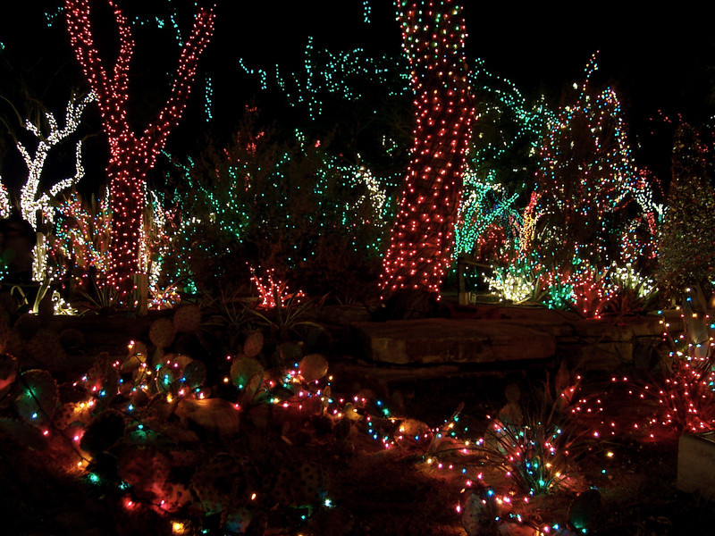 Holiday lights at the Ethel M chocolate factory (now renamed Ethel's Chocolate Lounge).