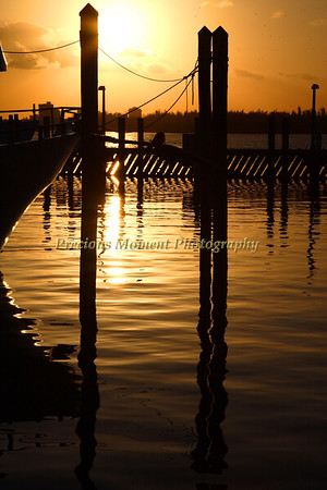 Sunset - February 2009