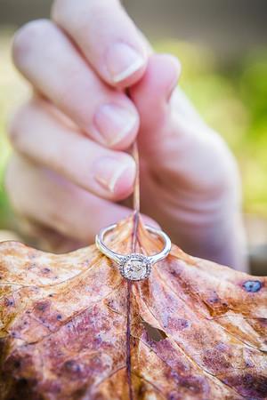 Amber & Brian - Engaged!