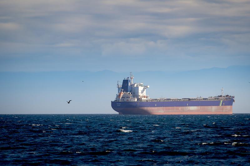 cargo ship BW Hazel (2).jpg