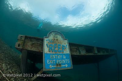 D800 underwater 1-0763