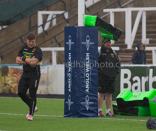 Newcastle Falcons vs Northampton Saints, Anglo Welsh Cup, Kingston Park, 6 November 2016